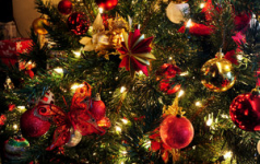 A sprinkling of seasonal songs