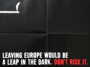 Remain_leap_in_the_dark