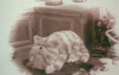 Aspects of Bagpuss